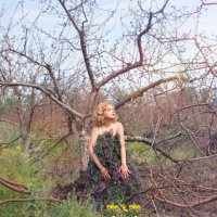 лесная фея спешит на помощь.... :: Райская птица Бородина