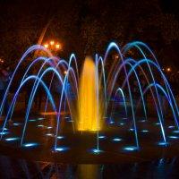 ночной цветок :: Дмитрий Поволоцкий