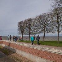 Прогулки по Петергофу :: Эльмира Суворова