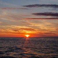 Черное море. Вечер :: Николай Николенко