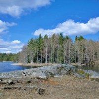 Скандинавская природа :: Swetlana V