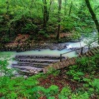 Сочи. Змейковские водопады. :: Лейла Новикова