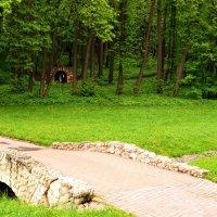 Парк в Царицино :: Владимир Болдырев
