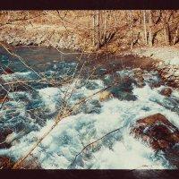 горная река :: Дарья Шевцова