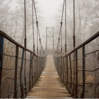 Мост в тумане (Цвет) :: Андрей Иванов