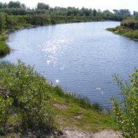 Затока реки Десна :: Александр Скамо