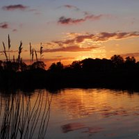 Предпоследний весенний закат. :: Антонина Гугаева