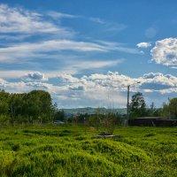 Прогулки возле дома :: Валерия (ЛеКи) Архангельская