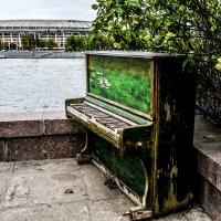 рояль в кустах :: Олеся Семенова