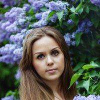 В сирени :: Мария Кутуева