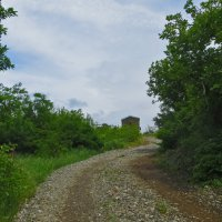 Долгая дорога к храму :: Наталья (D.Nat@lia)