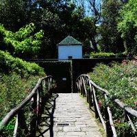 Parco Pinocchio, Italia :: Galia Rota
