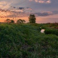 Старое русло в майском рассвете... :: Roman Lunin