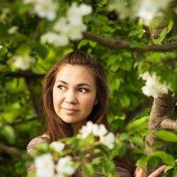 Цветение яблонь :: Наталья Отраковская