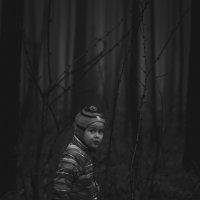 Темный лес :: Сергей Игуменшев