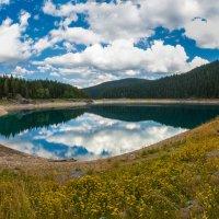 Черное озеро :: Денис Свечников