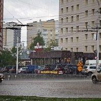 Непогода, непогода... :: Татьяна Губина
