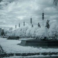 Прогулка по ВДНХ :: Андрей Воробьев
