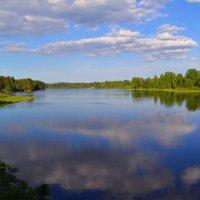 Рощинское озеро :: Наталья Левина