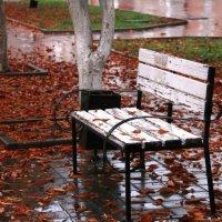 Осень.. :: Аля Троцкая