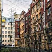 Мой двор :: Константин Бобинский