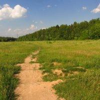 Настоящий июнь :: Андрей Лукьянов