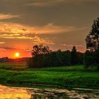 Летний вечер у реки :: Андрей Куприянов