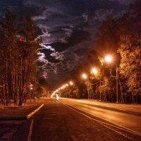 Ночная дорога :: Андрей Куприянов