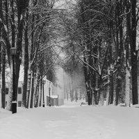 Зима... :: Олег Фролов