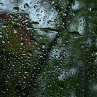 Дождь :: Марина