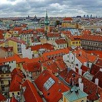 Пражские крыши... :: Виктор Льготин