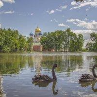 Николо-Угрешский монастырь :: Марина Назарова
