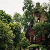 старая церковь :: Виктория Виноградова