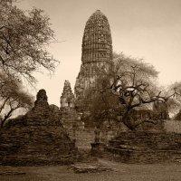 Руины храма Пхра Рам :: Евгений Печенин