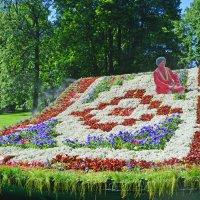 Цветочный ковёр -самолёт :: Наталья Левина