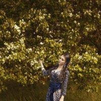 Когда осыпается яблонев цвет :: Женя Рыжов