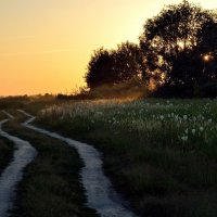 Дорога домой :: Юрий Анипов