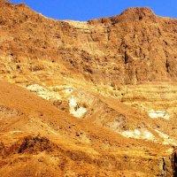 пустыня Израиля. :: Anna Sokolovsky