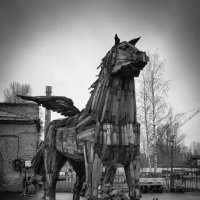 Конь :: Игорь Кизюн