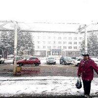 Снегопад :: Илья Тимкин