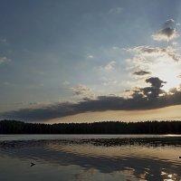 Утро над озером :: Юрий Цыплятников