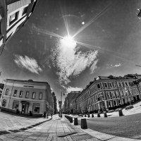 Прекрасно жить и видеть солнце! :: Ирина Данилова