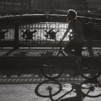 Питер, солнце, вело :: Алексей Фишер