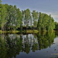Старая Рязань :: Борис Соловьев