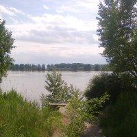 Дунай :: Натали Жоля