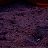 Sand :: Анастасия Неретина