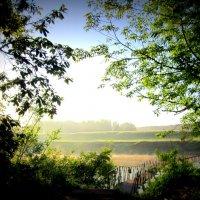 Утренний пейзаж . :: Мила Бовкун