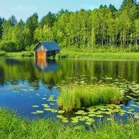 Рыбацкий домик :: Валерий Талашов