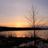 Закат на озере :: Igor Gruzdev