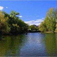 Пруд в городском парке. :: Anatol Livtsov
